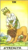 Strength - Major Arcana Tarot Card